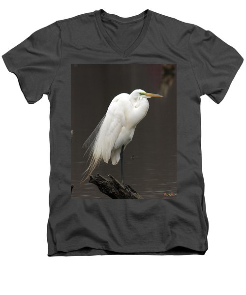 Men's V-Neck T-Shirt featuring the photograph Great Egret Resting Dmsb0036 by Gerry Gantt