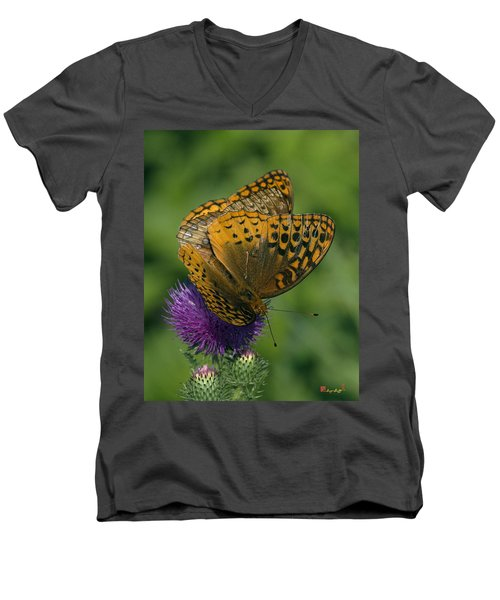 Great Spangled Fritillaries On Thistle Din108 Men's V-Neck T-Shirt