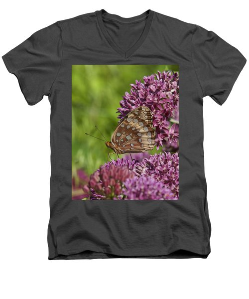 Great Spangled Fritillary Din194 Men's V-Neck T-Shirt