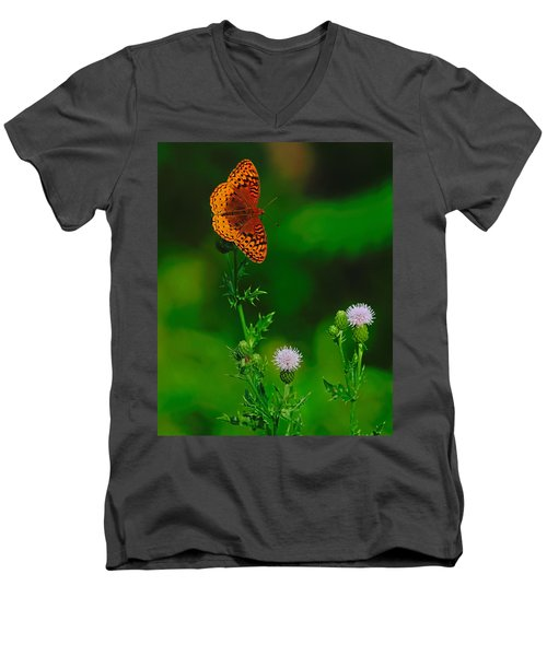 Great Spangled Fritillary Men's V-Neck T-Shirt
