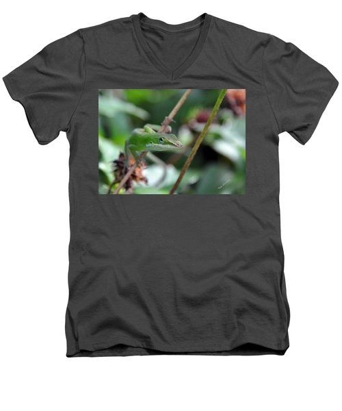 Green Anole Men's V-Neck T-Shirt by Kay Lovingood