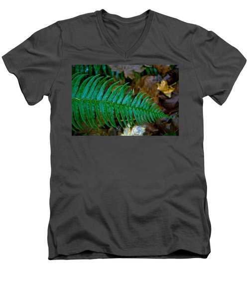 Green Fern Men's V-Neck T-Shirt by Tikvah's Hope