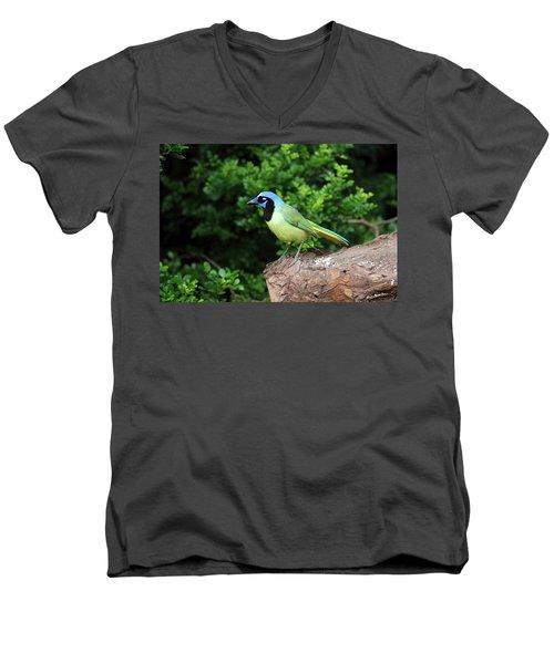 Green Jay Men's V-Neck T-Shirt