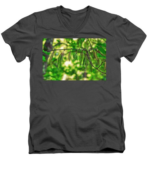 Green Redbud Seed Pods Men's V-Neck T-Shirt