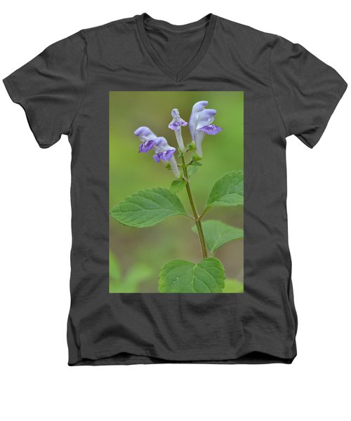 Men's V-Neck T-Shirt featuring the photograph Hairy Skullcap by JD Grimes