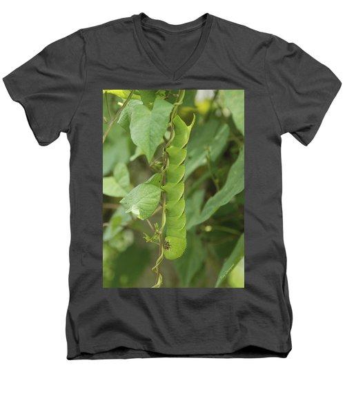 Hangin' Around Men's V-Neck T-Shirt by Kay Lovingood