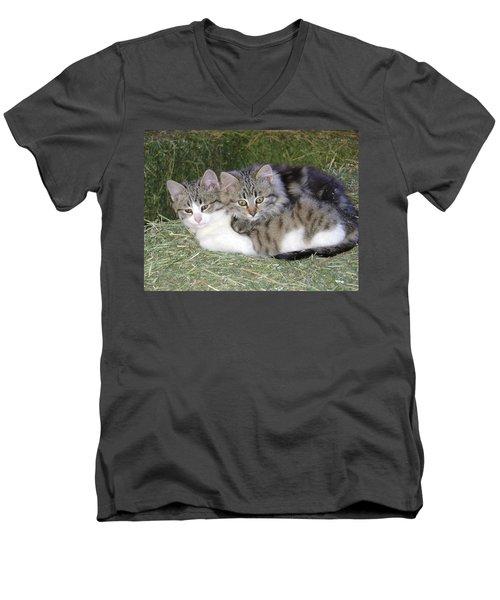 Haystack Buddies Men's V-Neck T-Shirt