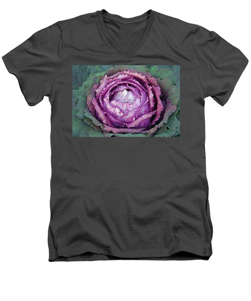 Heart Of Mystery Men's V-Neck T-Shirt