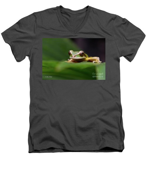 Heres Looking At You Men's V-Neck T-Shirt