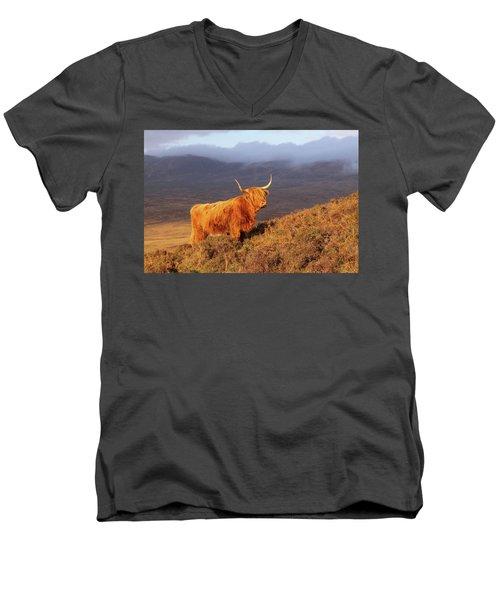 Highland Cattle Landscape Men's V-Neck T-Shirt