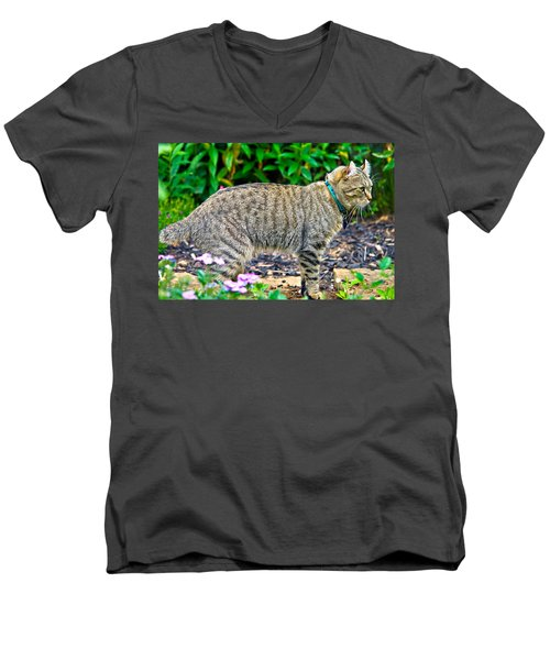 Highland Lynx Cat In Garden Men's V-Neck T-Shirt