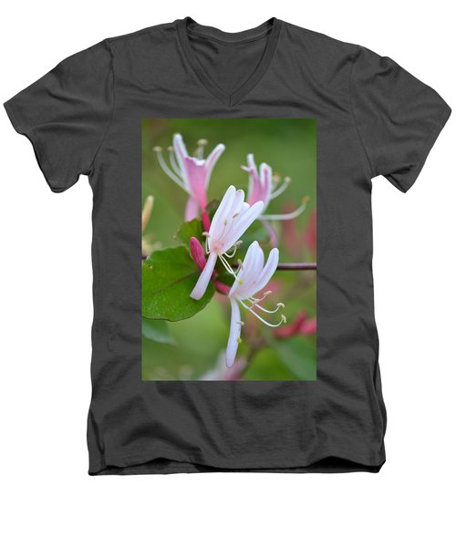 Men's V-Neck T-Shirt featuring the photograph Honeysuckle by JD Grimes