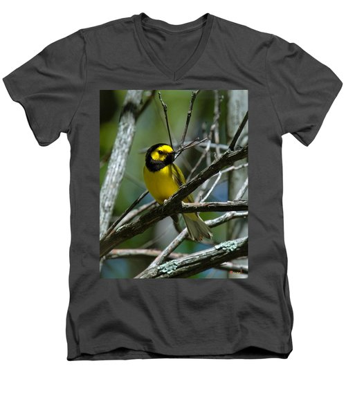 Men's V-Neck T-Shirt featuring the photograph Hooded Warbler Dsb166  by Gerry Gantt