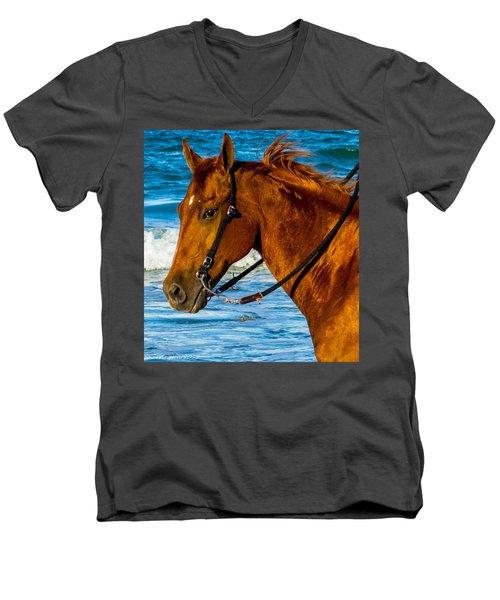 Horse Portrait  Men's V-Neck T-Shirt by Shannon Harrington