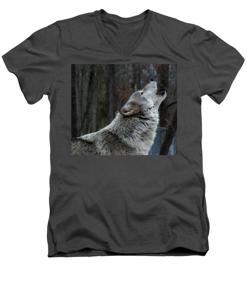 Howling Tundra Wolf Men's V-Neck T-Shirt by Richard Bryce and Family