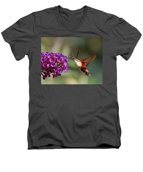 Hummingbird Moth Men's V-Neck T-Shirt by Randy J Heath