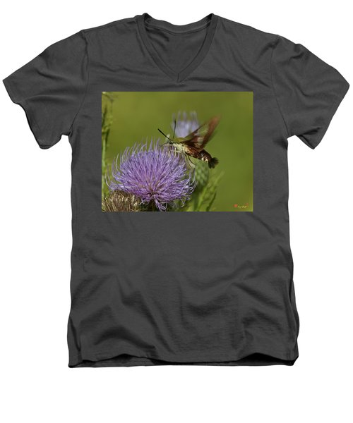 Hummingbird Or Clearwing Moth Din178 Men's V-Neck T-Shirt