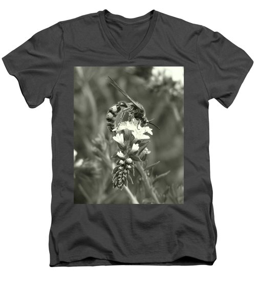 Hunter Wasp On Heliotrope Men's V-Neck T-Shirt