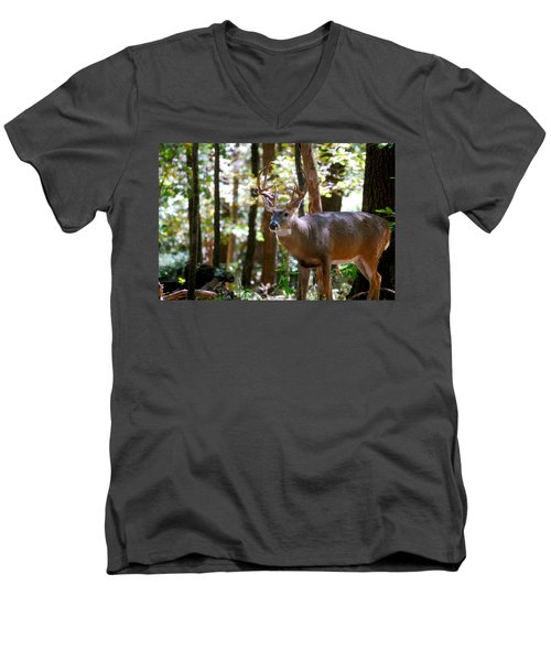 Men's V-Neck T-Shirt featuring the photograph Hunters Dream 10 Point Buck by Peggy Franz
