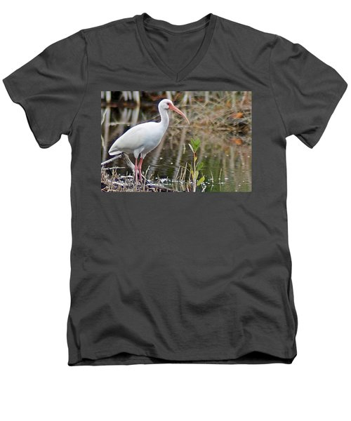 Ibis 1 Men's V-Neck T-Shirt by Joe Faherty