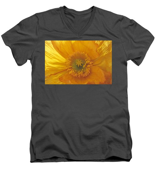 Iceland Poppy 4 Men's V-Neck T-Shirt