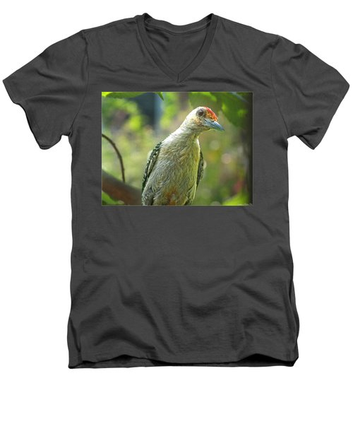 Men's V-Neck T-Shirt featuring the photograph Inquisitive Woodpecker by Debbie Portwood