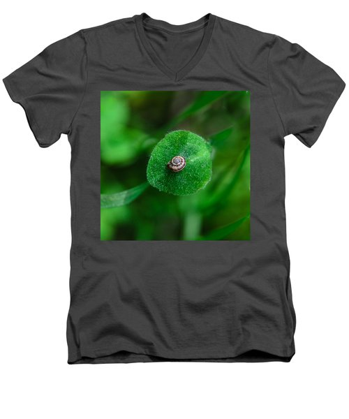 Islet Men's V-Neck T-Shirt