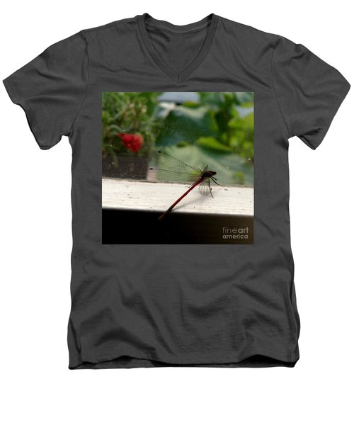 It's Always Greener Men's V-Neck T-Shirt by Lainie Wrightson