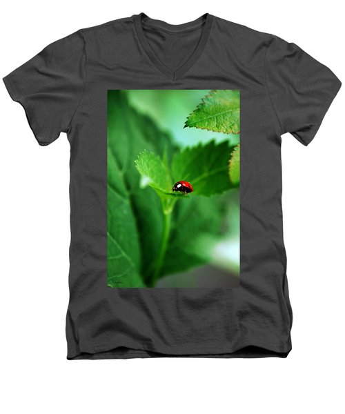 Little Red Lady Men's V-Neck T-Shirt