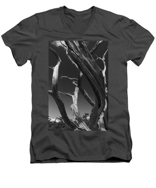Men's V-Neck T-Shirt featuring the photograph Lone Tree by David Gleeson