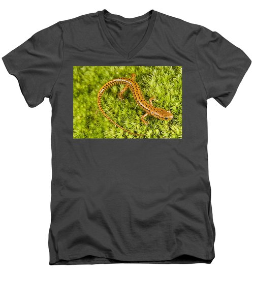 Longtail Salamander Eurycea Longicauda Men's V-Neck T-Shirt by Jack Goldfarb