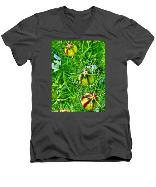 Men's V-Neck T-Shirt featuring the photograph Love In A Mist by Steve Taylor