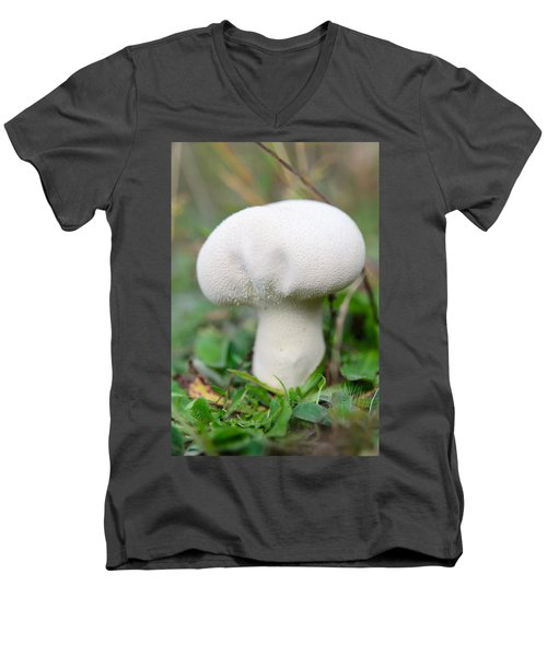 Lycoperdon Men's V-Neck T-Shirt