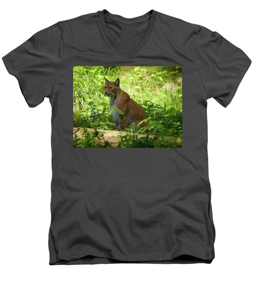 Lynx Men's V-Neck T-Shirt by Jouko Lehto