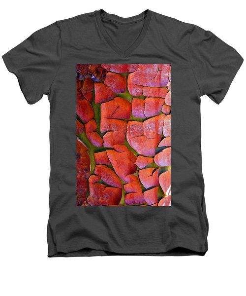 Madrone Men's V-Neck T-Shirt