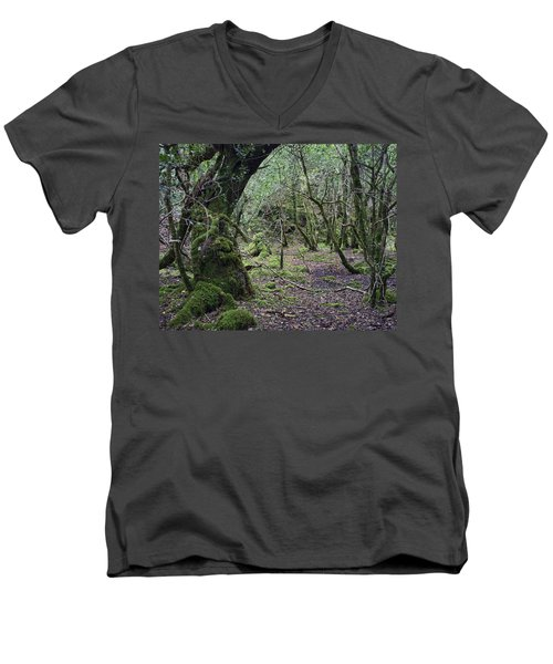 Men's V-Neck T-Shirt featuring the photograph Magical Forest by Hugh Smith