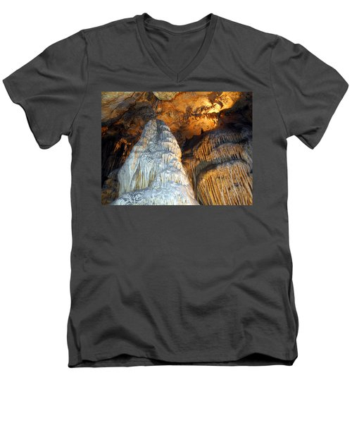 Magnificence Men's V-Neck T-Shirt by Lynda Lehmann