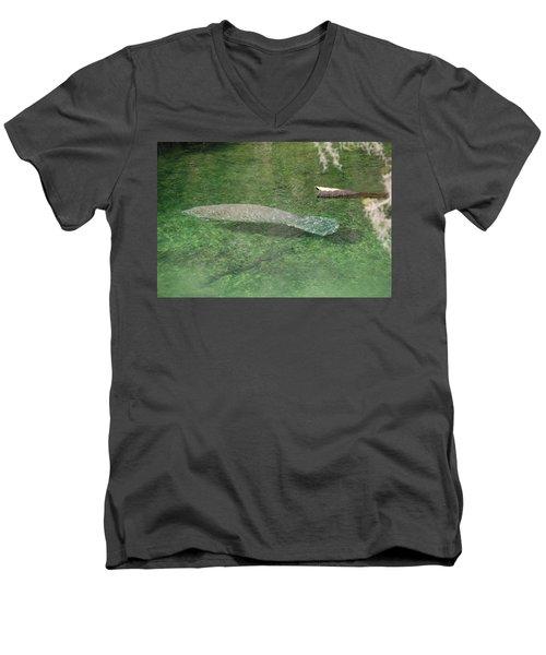 Manatee Men's V-Neck T-Shirt by Randy J Heath