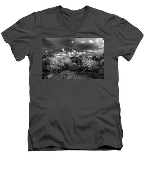 Mesa Dreams Men's V-Neck T-Shirt