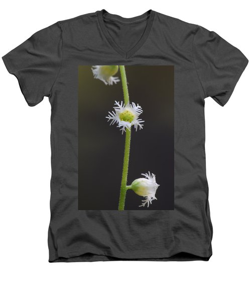 Miterwort Flowers Men's V-Neck T-Shirt
