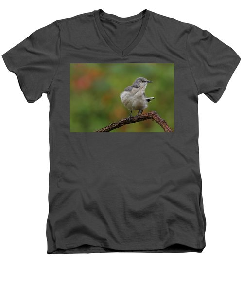 Mocking Bird Perched In The Wind Men's V-Neck T-Shirt