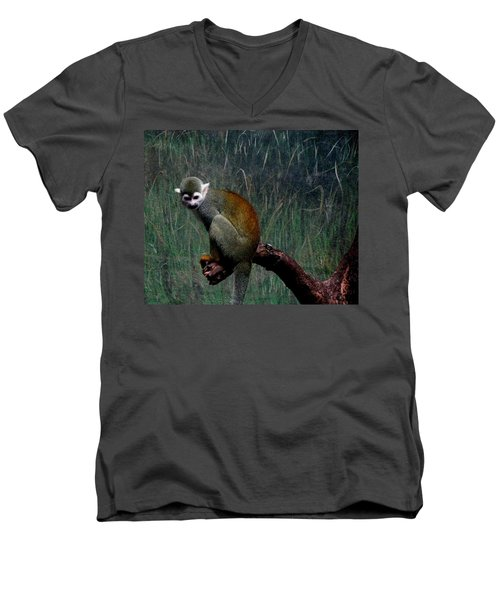 Men's V-Neck T-Shirt featuring the photograph Monkey by Maria Urso