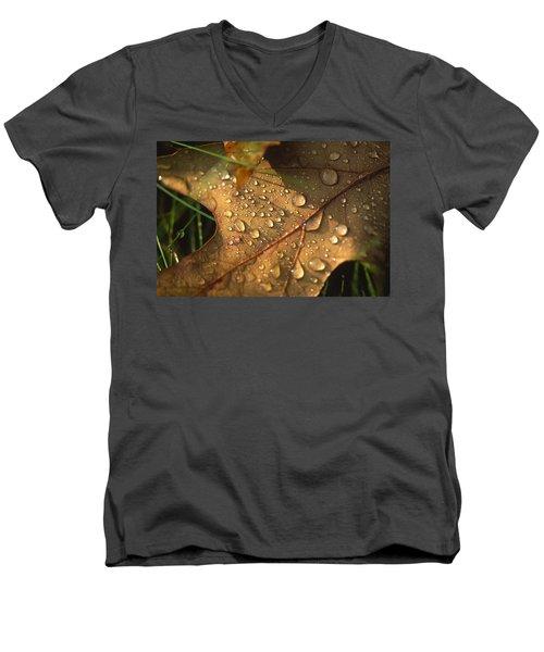 Morning Dew On Oak Leaf Men's V-Neck T-Shirt