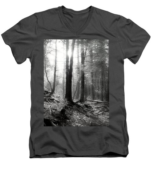 Men's V-Neck T-Shirt featuring the photograph Morning Sun by Mary Almond