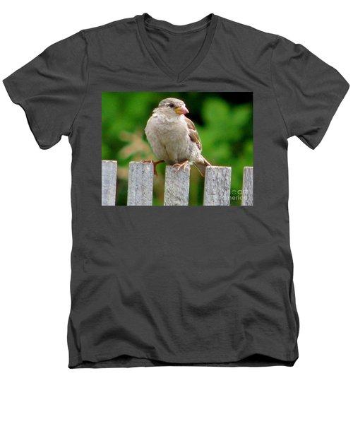 Morning Visitor Men's V-Neck T-Shirt by Rory Sagner