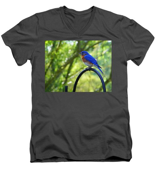 Mr Bluebird Men's V-Neck T-Shirt by Judy Wanamaker