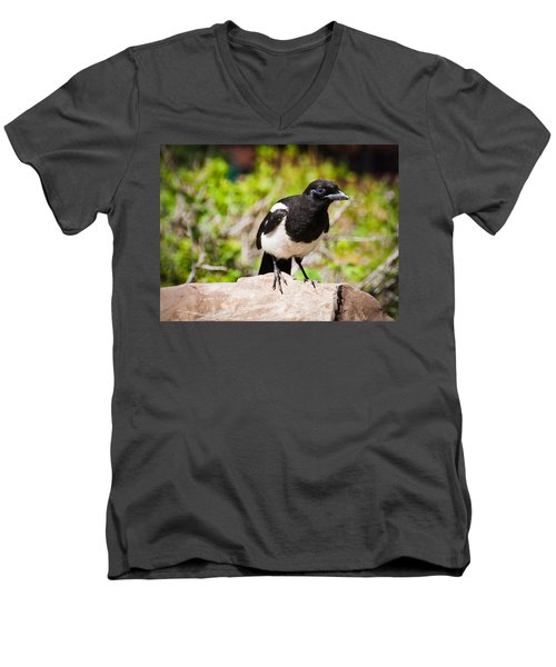 Men's V-Neck T-Shirt featuring the photograph Mr. Magpie by Cheryl Baxter