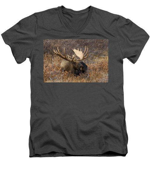 Men's V-Neck T-Shirt featuring the photograph Much Needed Rest by Doug Lloyd