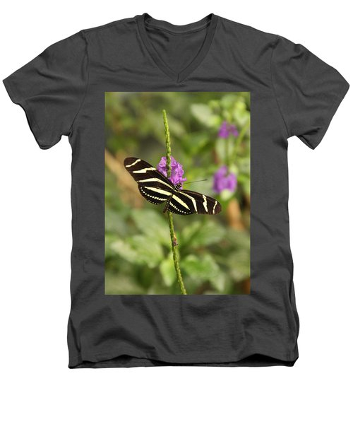 Natures Art Men's V-Neck T-Shirt