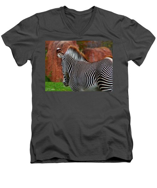 Nature's Barcode Men's V-Neck T-Shirt